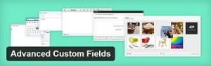 Advanced Custom Field WordPress Plugin