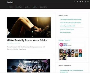 Delish free WordPress theme