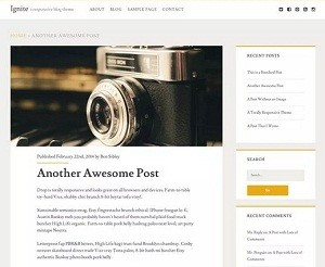 Ignite free WordPress theme