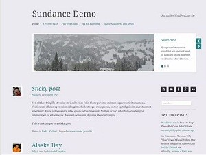 Sudance Demo free WordPress theme