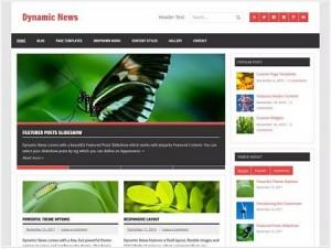 Dynamic News magazine WordPress theme