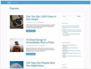 Express magazine WordPress theme
