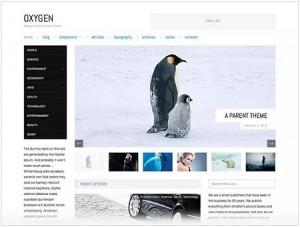 Oxygen magazine WordPress theme
