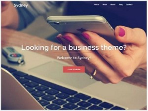 Sydney Ecommerce WordPress theme