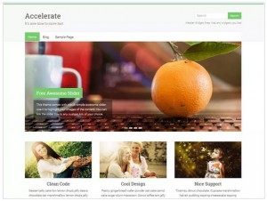 Accelerate WordPress Corporate Themes