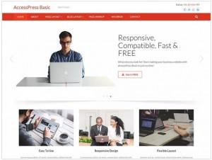 Accesspress Basic WordPress theme for Business
