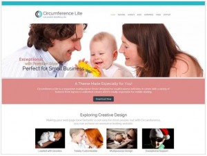 Circumference Lite theme for WordPress