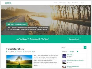 Dazzling WordPress theme for travel blog
