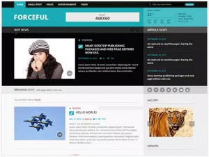 Forceful lite WordPress theme for news