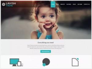 Lavish WordPress theme for Business