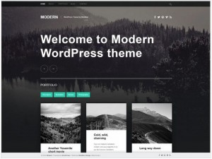 Modern WordPress themes for small business