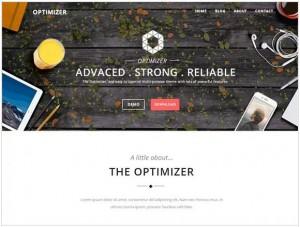 Optimizer WordPress themes for Portfolio