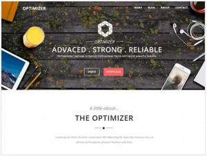 Optimizer WordPress themes for small business