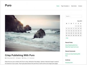 Puro WordPress themes for small business