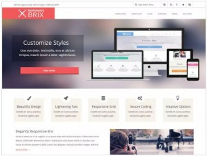 Responsive Brix WordPress themes for Business