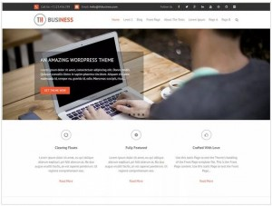 THBusiness theme for WordPress