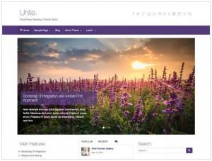 Unite WordPress theme for travel