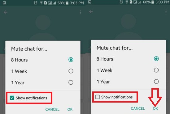 How to mute chat notifications on WhatsApp android
