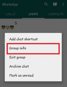 Tap on group info in WhatsApp group
