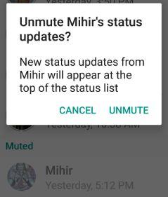 Unmute WhatsApp status update