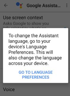 change language preferences Google Assistant