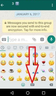 Tap GIF icon from bottom screen in WhatsApp